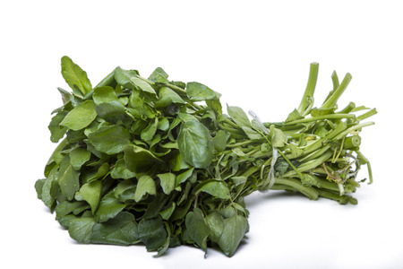 Close up view of a bunch of fresh watercress isolated on a white background. photo