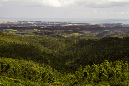 region of algarve: Landscape view of the lush and dense forest region of Monchique, Portugal.