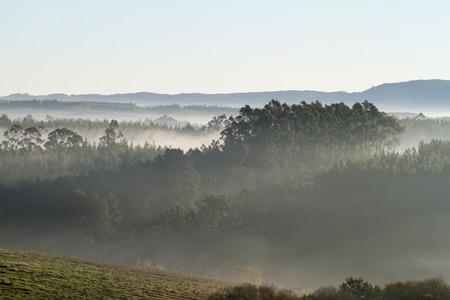 january sunrise: Beautiful view of the morning mist near Obidos, Portugal.