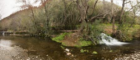 region of algarve: Beautiful view of a fresh river in the Algarve region, Portugal.