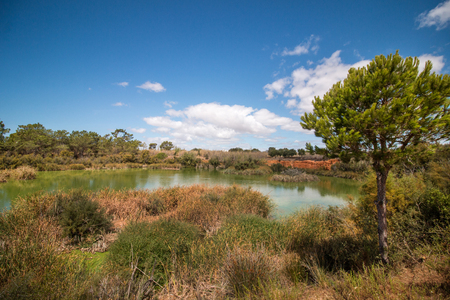 ria: Wide view of a lake for birdwatching in the Ria Formosa marshlands, Portugal. Stock Photo