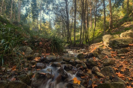 monchique: Beautiful river mountain region in autumn season located on Monchique, Portugal.