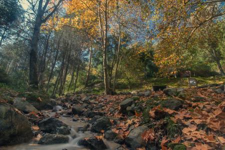 Beautiful river mountain region in autumn season located on Monchique, Portugal.
