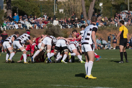 la union hace la fuerza: Rugby players grab each other in a dispute for the ball.