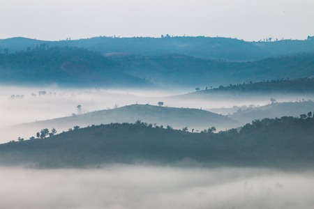 misterious: Beautiful view of the morning fog filling the valleys of smooth hills.