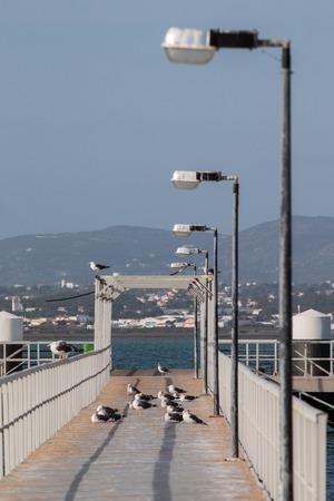 region of algarve: View of the footbridge on culatra island in the Algarve region.