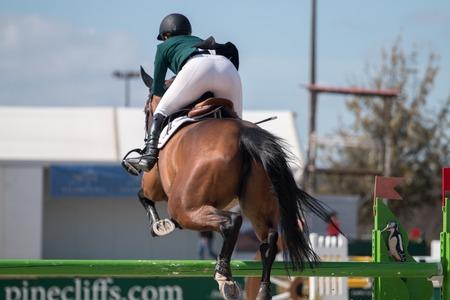 uomo a cavallo: Vilamoura, Portogallo - 2 aprile 2016: Cavallo di salto ostacoli competiion, chiamato Vilamoura Atlantic Tour che porta i migliori atleti per l'evento.