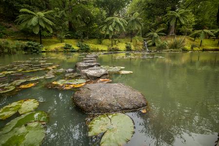 사오 미 구 엘 섬, 아 소르 스 제도, 포르투갈에있는 고급스러운 자연 공원의 테라 Nostra의 전망.