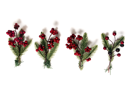 Different Christmas berry branches isolated on a white background. 스톡 콘텐츠