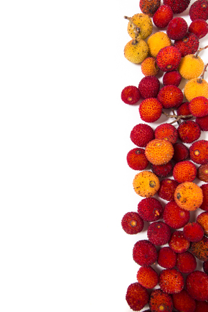 흰색 배경에서 격리하는 딸기 나무 (Arbutus Unedo) 과일의 뷰를 닫습니다.