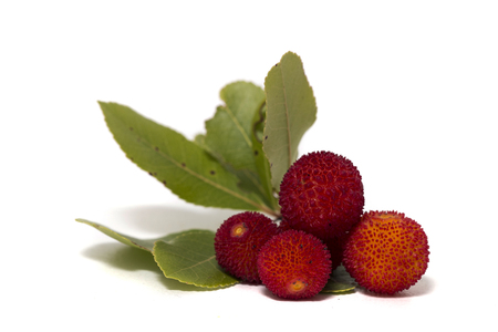 Close up view of strawberry tree (Arbutus Unedo) fruit isolated in white background. 写真素材