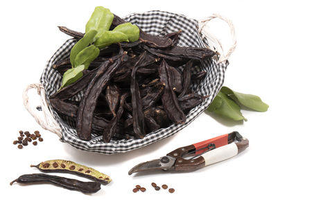 carob fruits with leafs isolated over a white background.