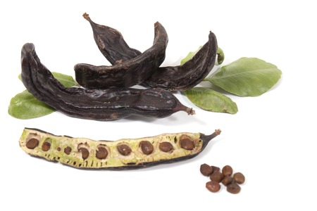 carob fruits with leafs isolated over a white background. 스톡 콘텐츠