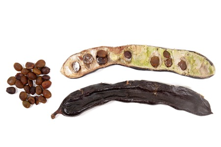 carob fruits with leafs isolated over a white background. Stock Photo
