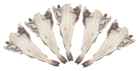 Close up view of a portuguese salted codfish isolated on white background.