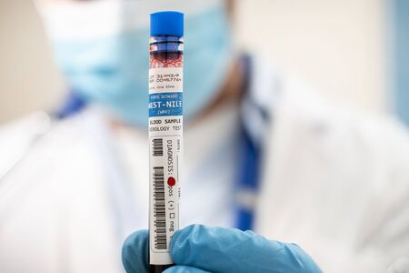 View of a doctor holding a fictional test tube blood sample, infected with west-nile virus. Standard-Bild