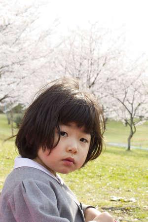 cherry tree and girl