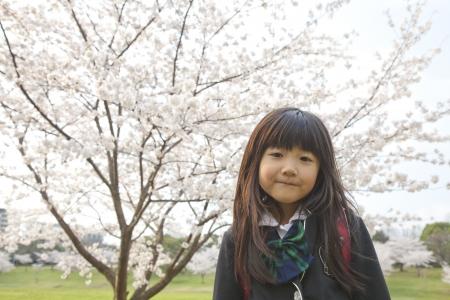 cherry tree and girl photo