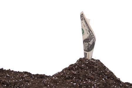 reproduce: money on soil