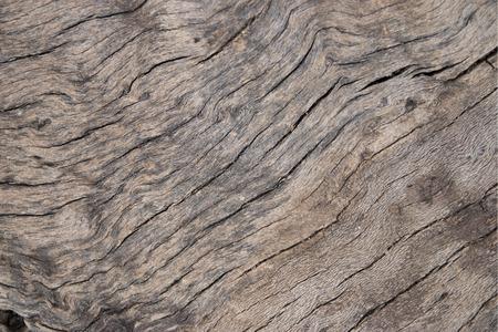 textured: textured wood background