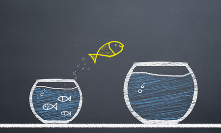 innovative concept. fish switch from aquarium to larger aquarium Banco de Imagens