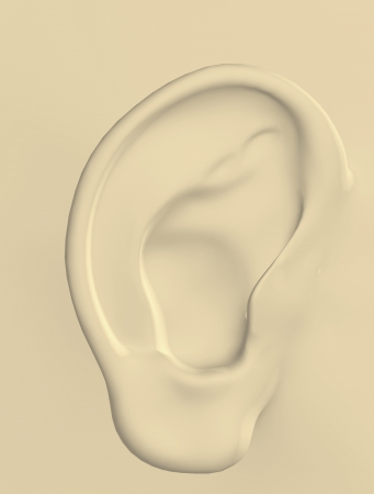 ear Stock Photo - 16385812