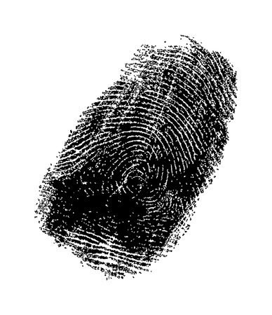 highly detailed black and white fingerprint vector Vector