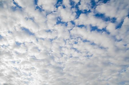 cloud scape: Blue sky and cloud scape background.