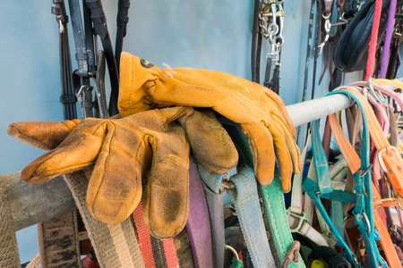 leather glove: Leather glove for protection