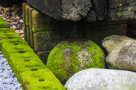 ornamental garden: Ornamental Garden with lichen on the stone Stock Photo