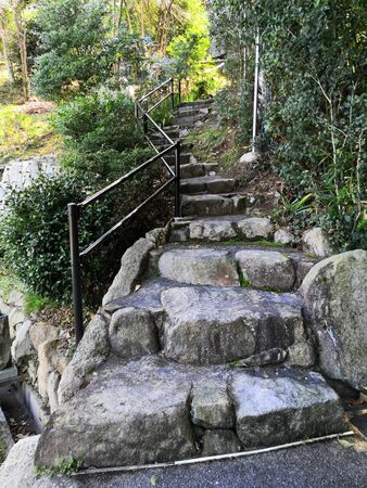 Stone steps in the mountains