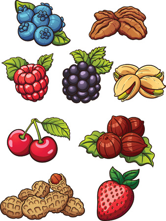 Cartoon nuts and berries. Vector clip art illustration with simple gradients. Each on a separate layer. Ilustração