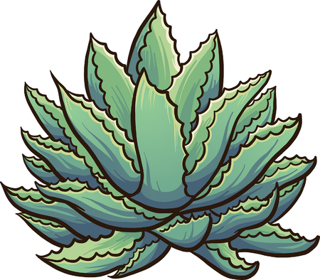 Cartoon agave plant. Vector clip art illustration with simple gradients. All in a single layer. Ilustração