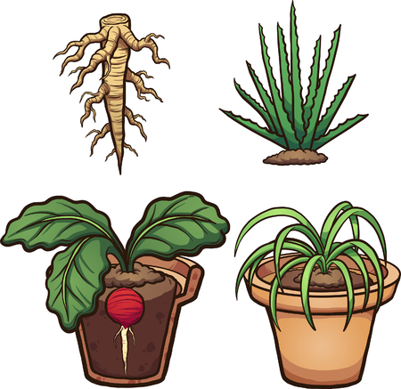 Cartoon plants, roots and flower pot. Vector clip art illustration with simple gradients. Some elements on separate layers.