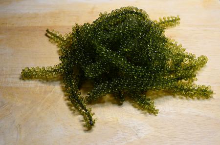 caviar: Green caviar
