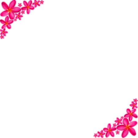 repackaged: Pink frangipani Background