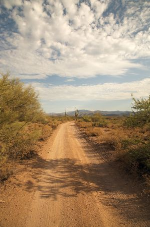 route desert: Desert Road  Banque d'images
