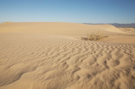 Beautiful sand dunes in Glamis California