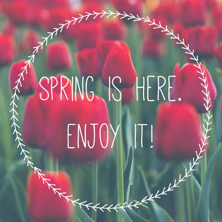 Motivating spring poster card illustration