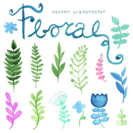 Vector bloem set. Kleurrijke bloemen collectie met bladeren en bloemen, tekening aquarel. Lente of zomer ontwerp voor de uitnodiging, huwelijk of wenskaarten