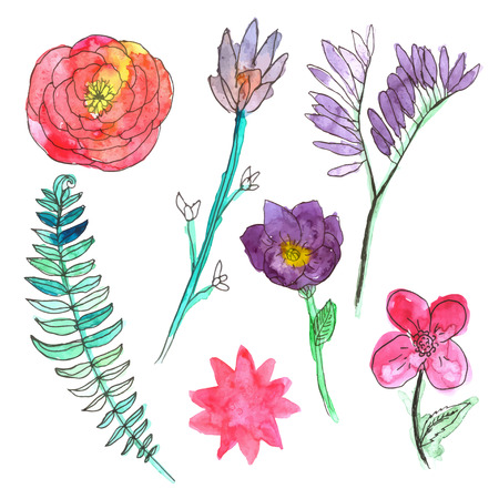 그린: Hand painted watercolor flowers.