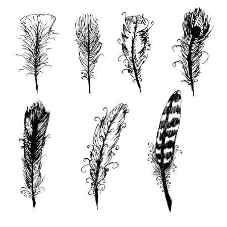 black feather: Hand drawn ink feather set. Vector elements.