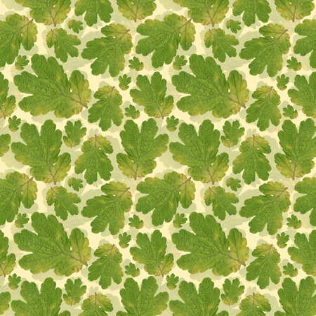 jpeg: Photo based  vector repeating seamless pattern with oak leaves. Unique jpeg pattern for wallpaper and sscrapbooking. Stock Photo