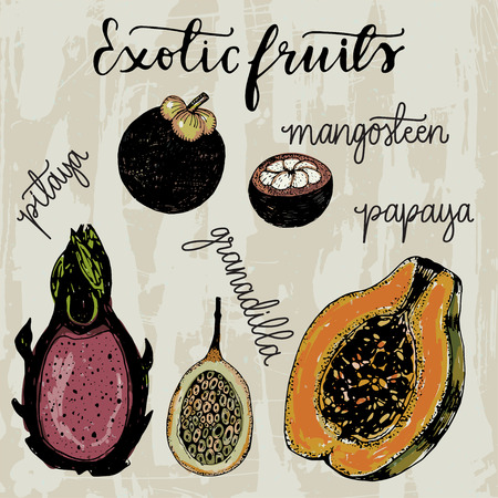 exotic fruits: Set of hand drawn sketchy exotic fruits illustration in a vintage style.