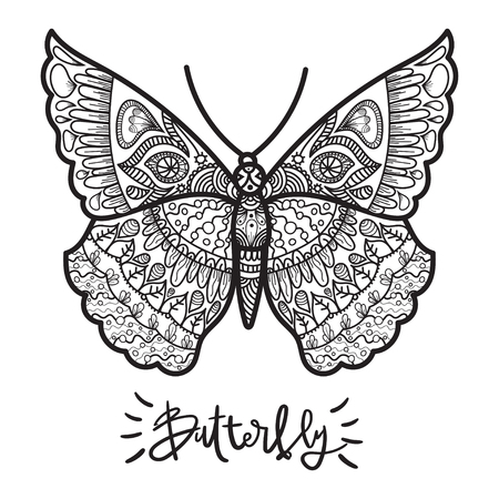 adults: Vector illustration for adults coloring books. Coloring page for adults.  Single butterfly for coloring. Illustration