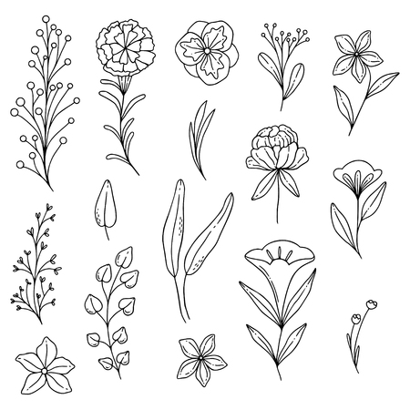 Illustrated doodle flowers, organic lines and shapes, floral design elements.