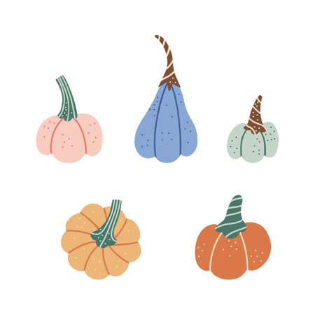 Adorable pumpkin of various shapes and colors.