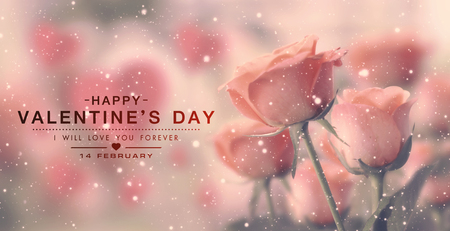 Happy valentine day, fine daisy color tone design, Blur and Select focus background 写真素材