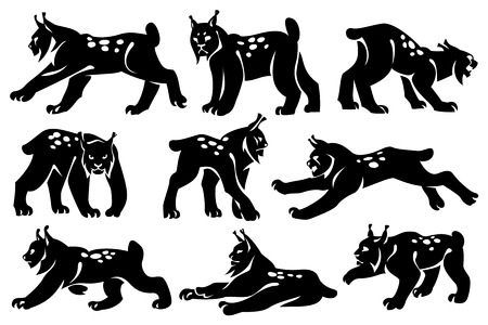 A set of decorative illustrations of lynxes. Drawing on a white background. Design element.