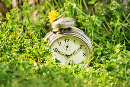summer time: Spring time. Summer time. Old fashoined clock on a meadow. Stock Photo